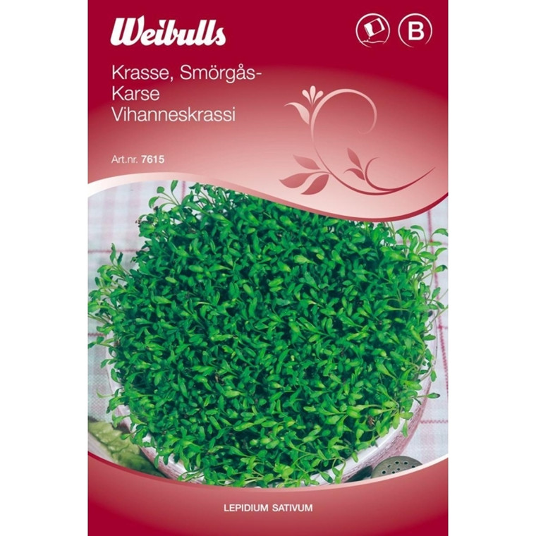 Karse - Lepidium sativum - Frø (W7615)