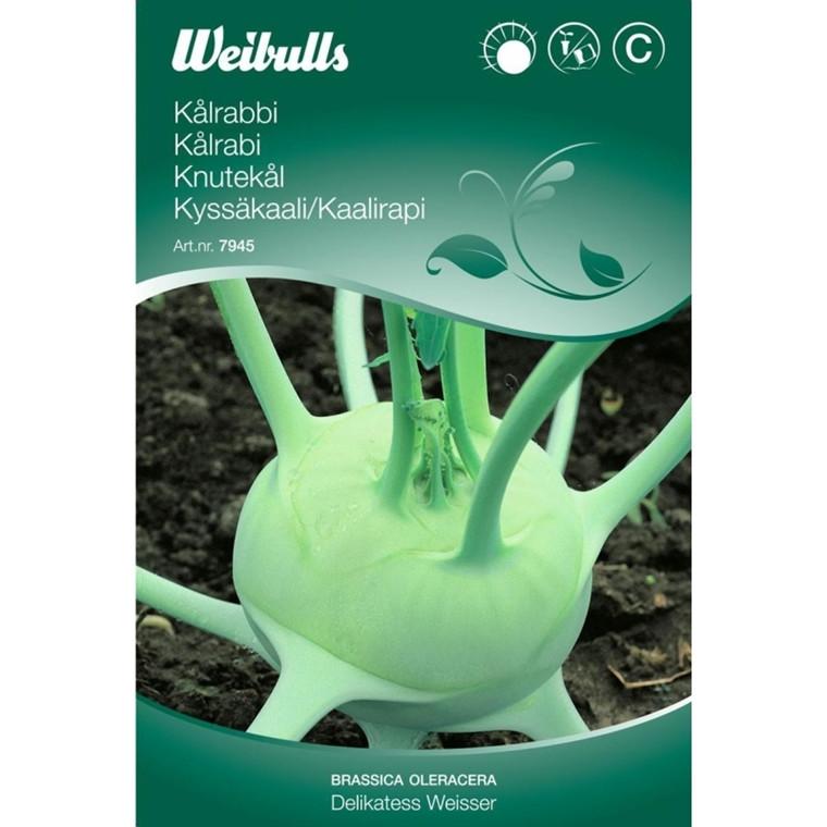 Kålrabi - Brassica oleracea - Delikatess Weisser - Frø (W7945)