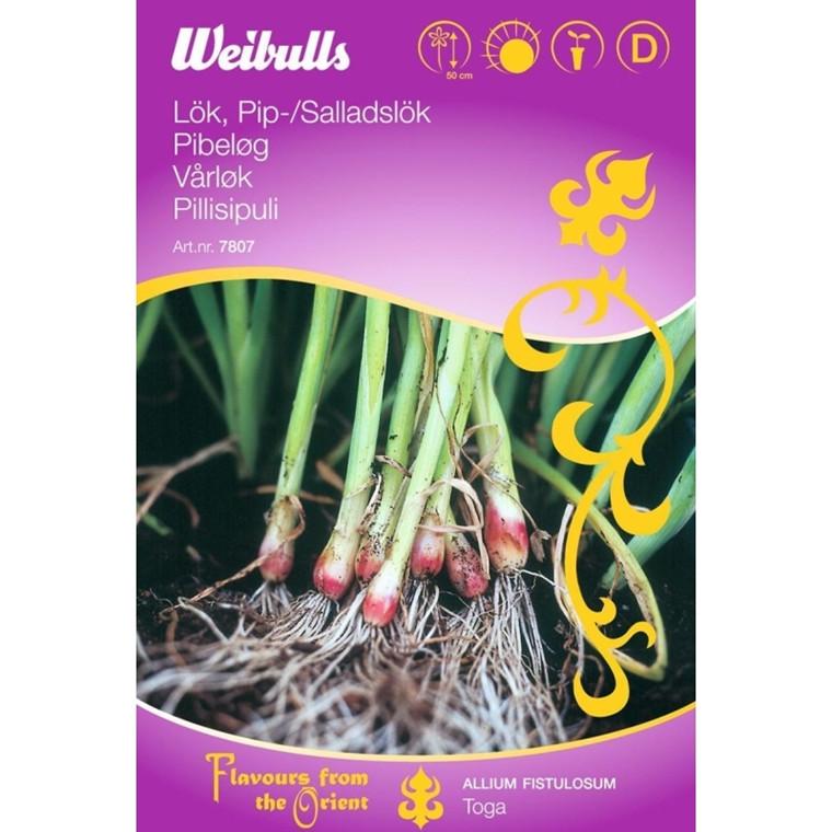 Pibeløg - Allium fistulosum - ORIENTAL - Frø (W7807)