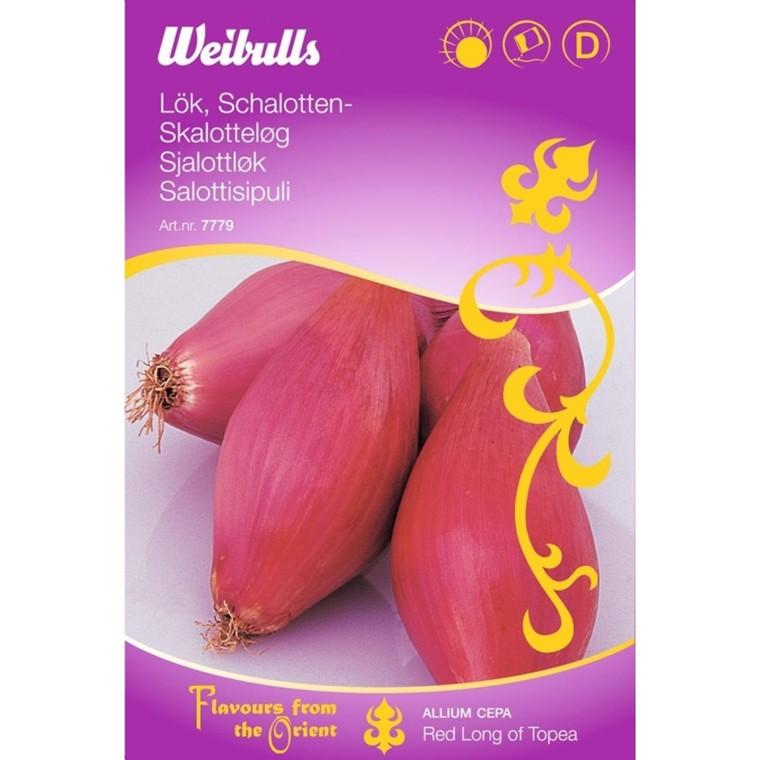 Skalotteløg, rød - Allium Cepa - ORIENTAL - Frø (W7780)