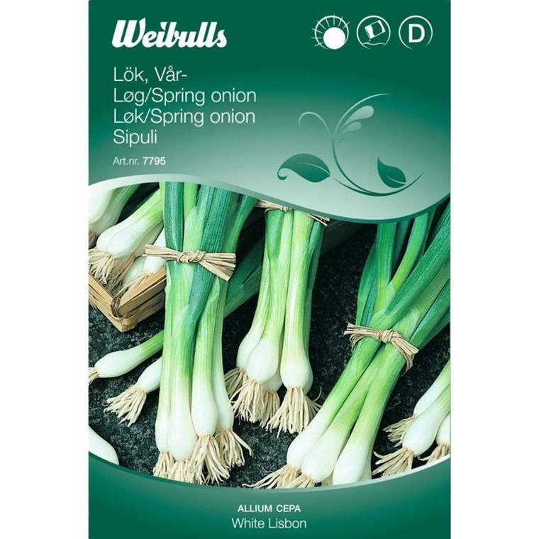 Løg / Spring Onion - Allium Cepa - White Lisbon - Frø (W7796)