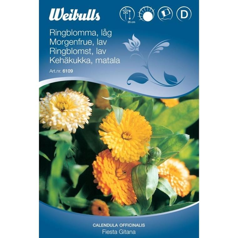 Morgenfrue, mix - Calendula officinalis, Fiesta giatana mix - Frø (W6109)