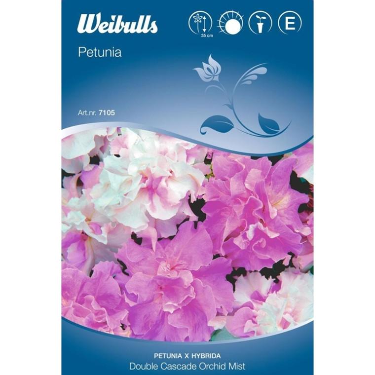 Petunia - Petunia x hybrida - Double Cascade Orchid Mist - Frø (W7106)