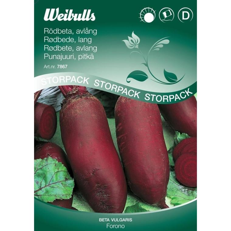 Rødbede, lang - Beta vulgaris - Forono - Storpk.- Frø (W7867)