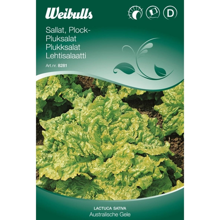 Pluksalat - Lactua sativa - Australische gele - Frø (W8281)
