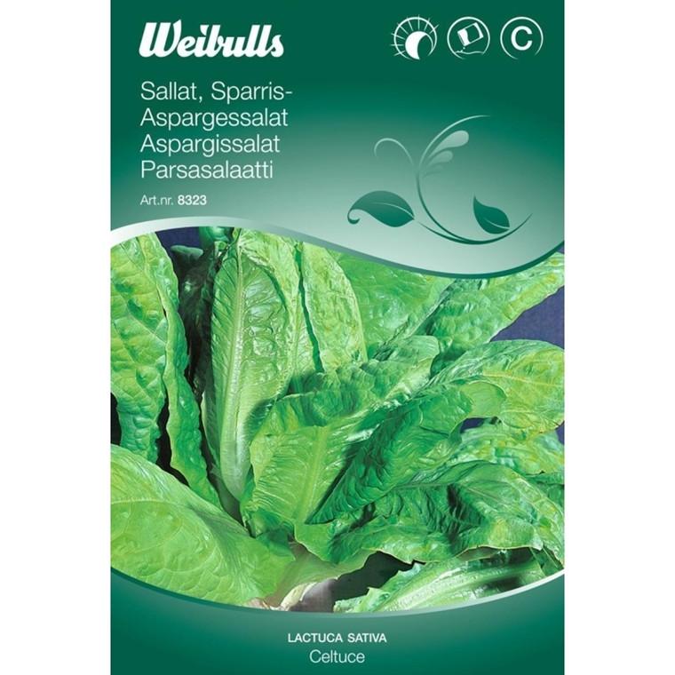 Aspargessalat - Lactua sativa - Celtuce - Frø (W8323)