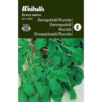 Sennepskål, Rucula - Eruca Sativa - KRAV - Frø (W8381)