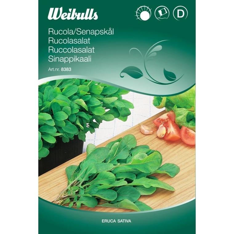 Ruccolasalat - Eruca sativa - Frø (W8383)