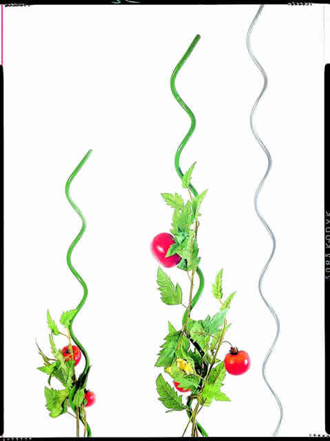 Tomat spiral - grøn 180 cm (W740155)