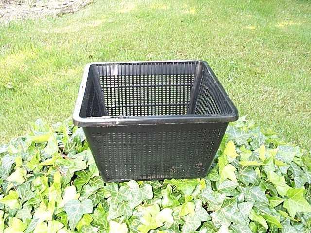Vandplante kurv firkant 20x20 cm