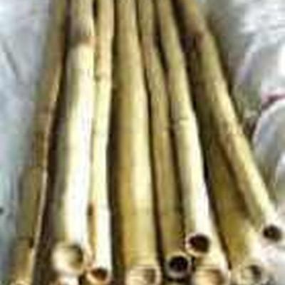 Tonkinstokke. 90 cm. 6/8 mm. (1 bdt. á 10 stk.) (G1511733)