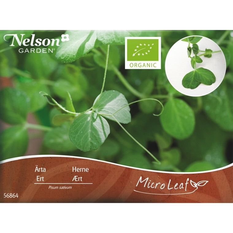 Micro Leaf - Ærtespirer - Næringsrige grønne blade.