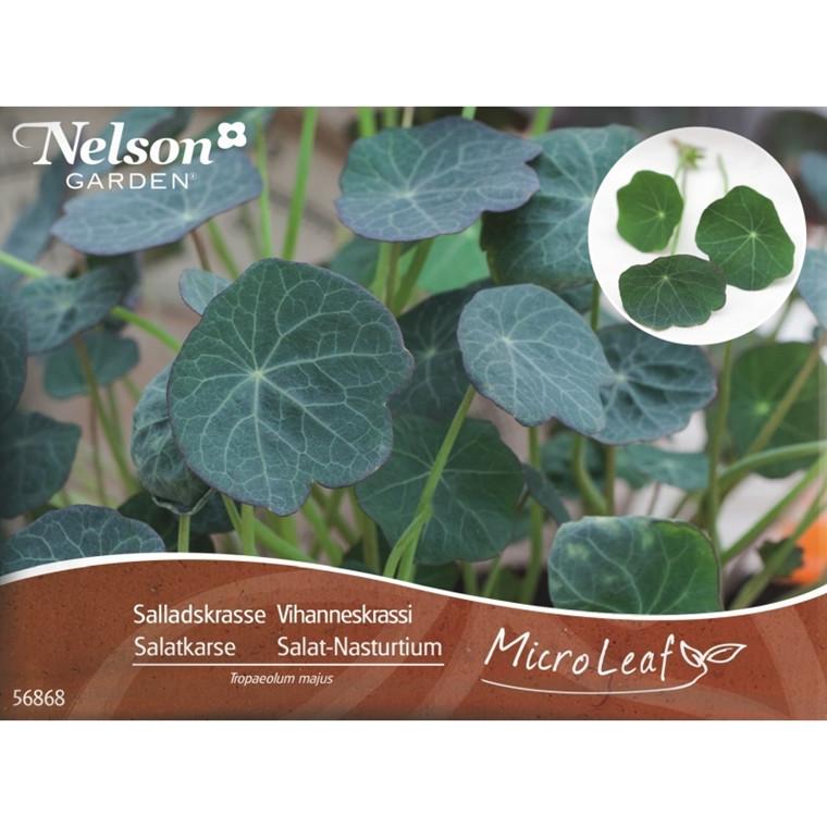 Micro Leaf - Salat-Nasturtium - Næringsrige grønne blade