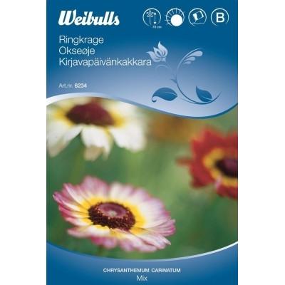 Okseøje mix - Chrysanthemum carinatum - Frø (W6234)
