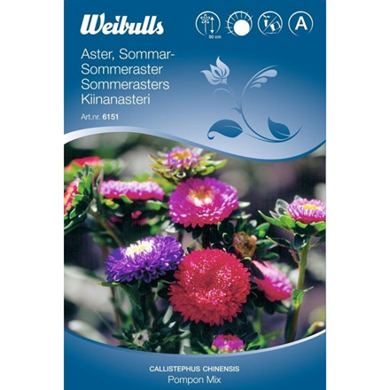 Sommarasters - Callistephus chinensis - Pompon mix - Frø (W6152)