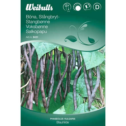 Stangbønne - Phaseolus vulgaris - Blauhilde - Frø (W8431)