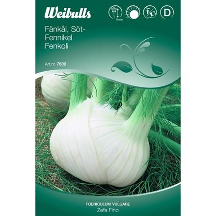 Fennikel - Foeniculum vulgare - Zefa Fino - Frø (W7609)