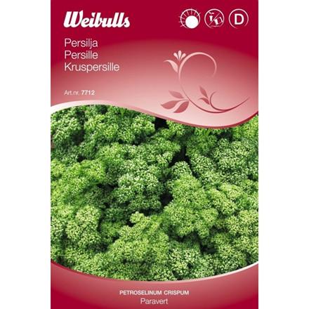 Kruspersille - Petroselinum crispum - Paravert - Frø (W7712)