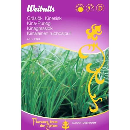 Kina purløg - Allium tuberosum - ORIENTAL - Frø (W7544)