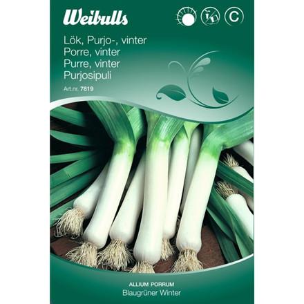 Porre, vinter - Allium porrum - Blaugrüner Winter - Frø (W7819)