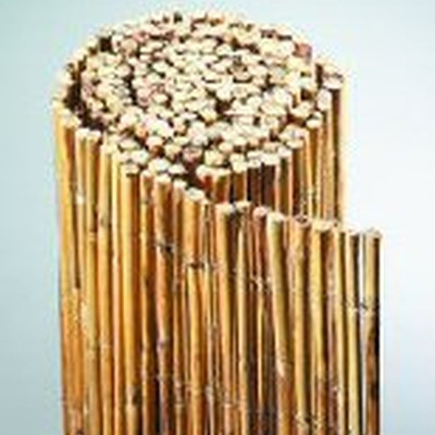 Bambus Hegn 'Macao' 90/300 (G1504026)
