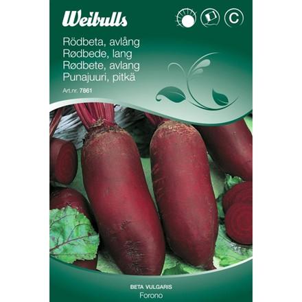 Rødbede, lang - Beta vulgaris - Forono - Frø (W7862)
