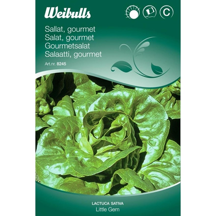 Salat, Gourmet - Lactua sativa - Little Gem - Frø (W8245)