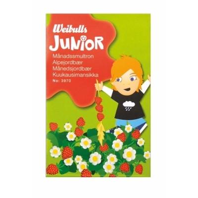 Weibulls Junior - Jordbær (W3970)