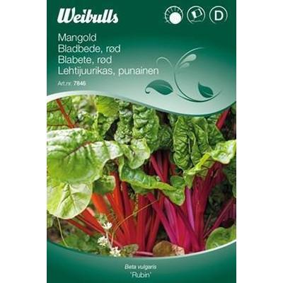 Bladbede - Beta vulgaris 'Rubin' - Frø (W7847)