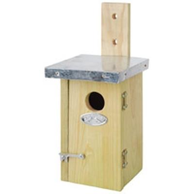 Gærdesmutte kasse (NKN/cl:8)
