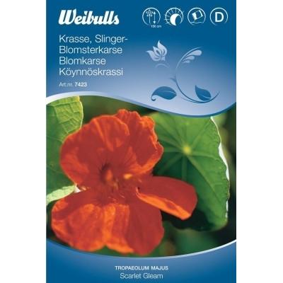 Blomsterkarse - Tropaeolum majus - Scarlet Gleam - Frø (W7423)