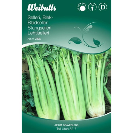 Bladselleri - Apium graceolens - Tall Utah 52-7 - Frø (W7825)