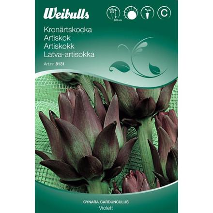Artiskok - Cynara cardunculus - Violet - Frø (W8131)