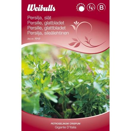 Glatbladet persille - Petroselinum crispum - Gigante d'Italia - Frø (W7717)