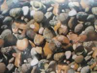 Bassinfolie, optisk stenfolie, (1 mtr.) bredde 6 meter