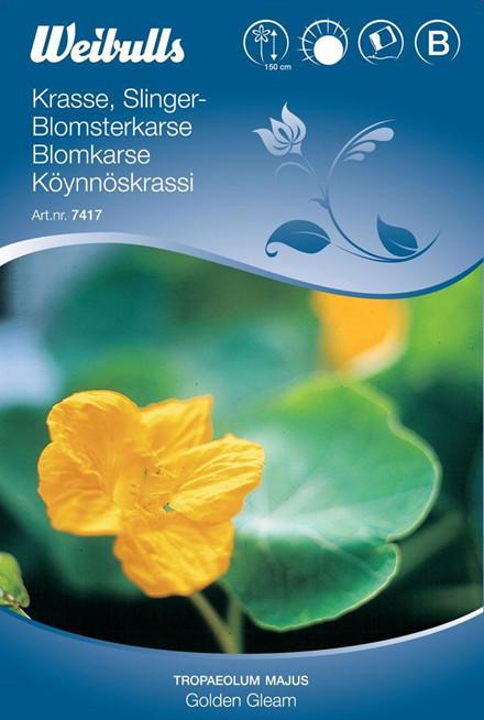 Blomsterkarse - Tropaeolum majus Lobbianum - Golden Gleam - Frø (W7417)