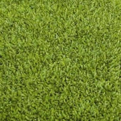 Leptinella dioica (Cotula) - Trædebregne - (5-15 m2) Færdig Bunddække