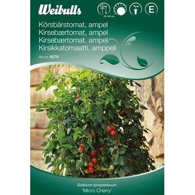 Tomat, Cherry - Solanum lycopersicum - Micro Cherry - Frø (W8579)