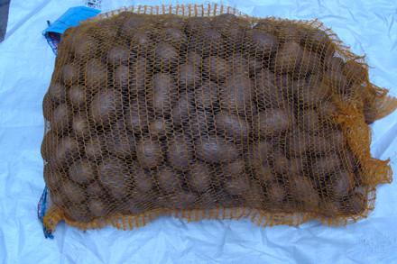 Jutlandia - Kartoffel - 10 kg sæk