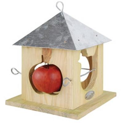 Æblehus, stor (FB19/cl:6)