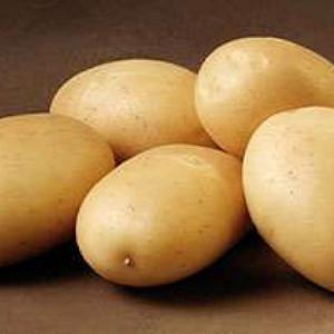 Hansa - Kartoffel - 2 kg