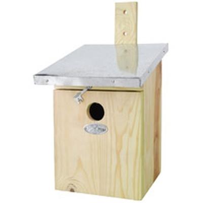Musvit kasse (NKK/cl:4)