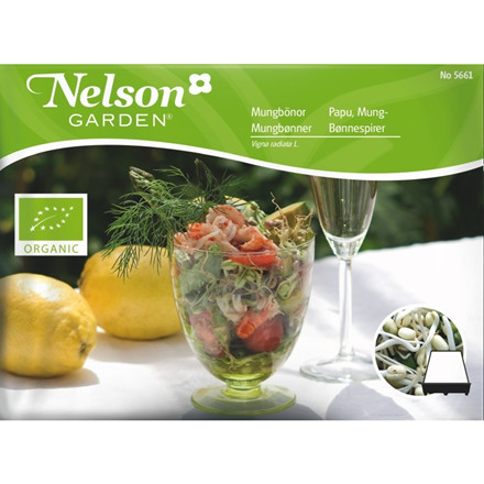 Nelson Garden spirer Bønnespirer, økologiske