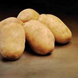 Royal - Kartoffel - 2 kg