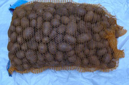 Solist - Kartoffel - 10 kg sæk