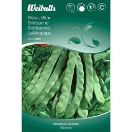 Snitbønne - Phaseolus vulgaris - Admires - Frø (W8425)