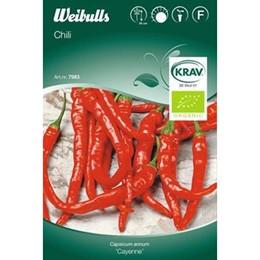 Peber, chili ' - Capsicum 'Cayenne' - KRAV- Frø (W7983)
