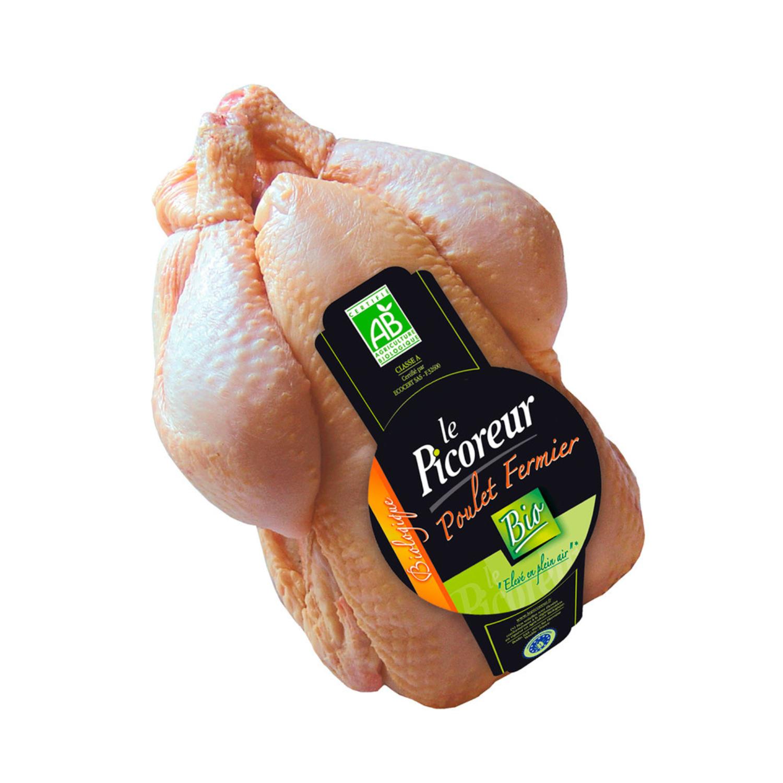 Økologisk kylling