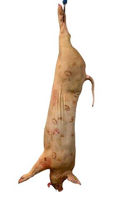 Ellevang økologisk ½ gris