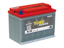 Battery 110Ah/12V/302x172x223 <br />Traction Tube